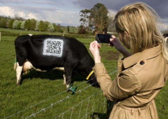 qr Codes Pictures qr Codes The New Shiny Object